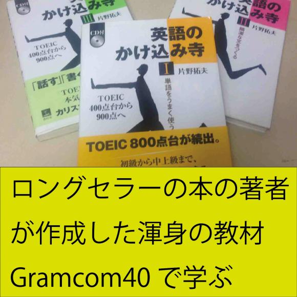 独自教材(Gramcomシリーズ)